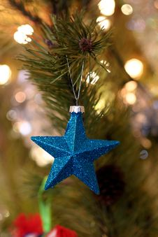 Free Shallow Focus Photography Of Blue Star Christmas Tree Decor Royalty Free Stock Photo - 109918865