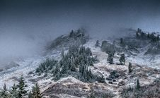 Free Foggy Mountain With Pine Trees Stock Photos - 109918893