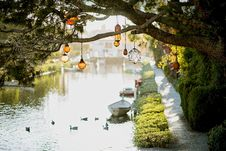 Free Brown Pendant Lamp Hanging On Tree Near River Royalty Free Stock Photo - 109919265