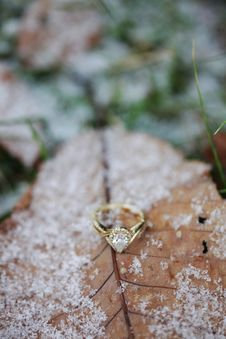 Free Diamond Pear Cut Ring On Brown Leaf With Snow Stock Images - 109919614