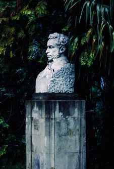 Free Man Bust Beside Trees Royalty Free Stock Images - 109919879