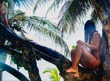 Free Woman Wearing Orange Bikini Sitting On Tree Branch Stock Image - 109920511