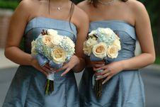 Free Women S Gray Strapless Dresses Stock Image - 109920591