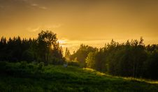 Free Forest During Sunset Royalty Free Stock Photo - 109920825