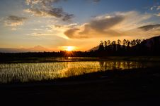 Free Silhouette Of Rice Fields Under Calm Sky During Golden Hour Stock Photos - 109921163