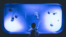 Free Boy Standing In Front Of Jelly Fish Aquarium With Purple Light Stock Photo - 109921870