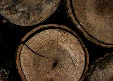 Free Round Brown Wooden Slab Stock Photos - 109921933