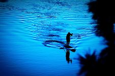 Free Silhouette Of Person Paddling Boat Stock Photography - 109922462