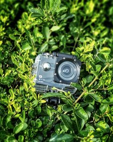 Free Gray And Black Action Camera On Green Leaves Plants Stock Photo - 109922530
