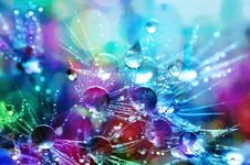 Free Bokeh Shot Of Water Droplets Royalty Free Stock Image - 109922556