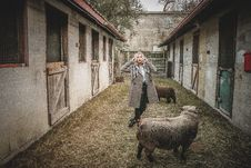 Free Woman Standing Near Sheep Stock Image - 109922731