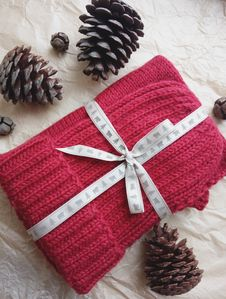 Free Red Knitted Textile And Three Black Pine Cones Royalty Free Stock Photo - 109922965