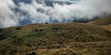 Free Green Hill Covered By Clouds Royalty Free Stock Photography - 109922987