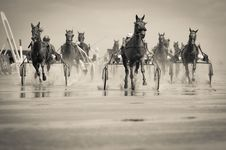 Free Grayscale Photo Of Group Of Horse With Carriage Running On Body Of Water Stock Photo - 109923500