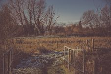 Free Person Taking Photo Of Pathway With Grass Field In Sepia Photography Royalty Free Stock Photography - 109924497