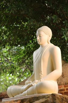 Free Close Up Photo White Buddha Statue Stock Photo - 109924570
