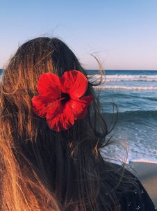 Free Photo Of A Woman With Hibiscus On Her Head Facing Towards The Sea Stock Photo - 109924650
