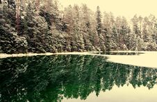 Free Snowcapped Trees Near Body Of Water Stock Photo - 109924970