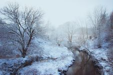 Free Woodland Stream Covered With Snow Stock Photo - 109925180