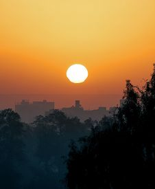 Free Silhouette Of Trees And Buildings During Sunset Royalty Free Stock Photography - 109925307