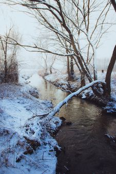 Free Brown Bare Tree Near River Covered In Snow Royalty Free Stock Photography - 109925537
