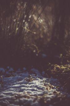 Free Snow On Ground Stock Image - 109925571