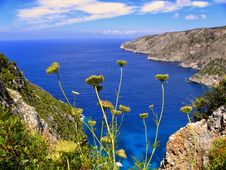 Free Yellow Chrysanthemums Overlooking Sea View With Mountains Stock Image - 109925621