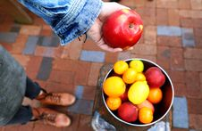 Free Person Holding Apple Fruit Stock Photo - 109927240