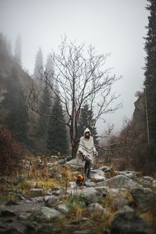 Free Person In White Cardigan N Near Tree Stock Images - 109927544
