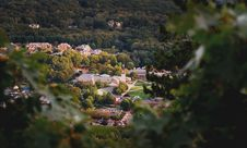 Free Depth Of Field Photography Of Church Surrounded Of Tall Trees Royalty Free Stock Image - 109927666