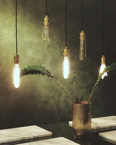 Free Green Leaves In Glass Vase Under Clear Bulb Pendant Lamps Royalty Free Stock Photography - 109928177