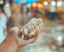 Free Bokeh Photo Of Person Holding Shanghai Roll Wraps With Mayonnaise Royalty Free Stock Photo - 109928215