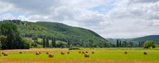 Free Panoramic Photograph Of Haystacks On Field Stock Image - 109928591