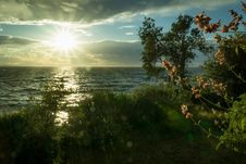 Free Sun Ray Hitting Body Of Water Green Grass Trees White Clouds During Sunrise Royalty Free Stock Image - 109928826