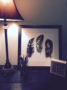 Free Black Feathers Painting Beside Brown And Black Lamp Shade Royalty Free Stock Photos - 109929198