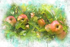 Free Fruit, Apple, Watercolor Paint, Local Food Stock Images - 109933004