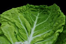 Free Vegetable, Leaf Vegetable, Leaf, Produce Stock Photos - 109933363