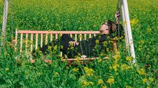 Free Man In White And Brown Canopy Swing Surrounded With Yellow Petal Flower Royalty Free Stock Photos - 109973348