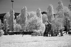Free Infrared - Park Stock Images - 115864