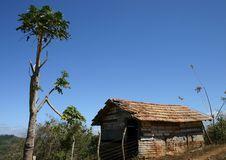 Free Hut And Tree Royalty Free Stock Photo - 118735