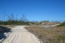 Free Sand Dune 1 Stock Photography - 1102862