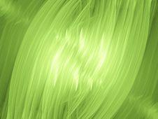 Free Live Green Stock Photos - 1105553