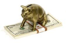 Free Savings Stock Photos - 1105633