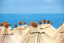 Sea Sun Umbrellas Stock Image
