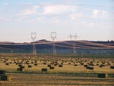 Power Transmission Lines Over A Field Of Bailed Hay Royalty Free Stock Image