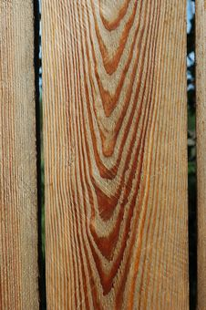 Free Patterned Pine Planks Stock Image - 1109841