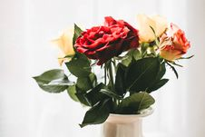 Free Red And White Flowers With White Vase Stock Image - 110047091