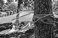 Free Girl And Boy On Hammock Grayscale Photo Royalty Free Stock Photos - 110174318