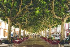 Free Red Wooden Table With Chairs On Street Royalty Free Stock Photos - 110174368