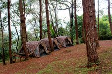 Free Three Brown Tents Beside Green Leaf Trees Stock Photography - 110174412